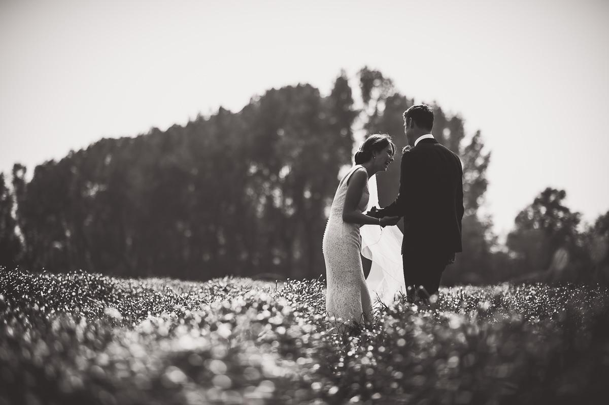 Grittenham Barn Wedding Photography | Hannah & Chris 36 wedding cake 2 1